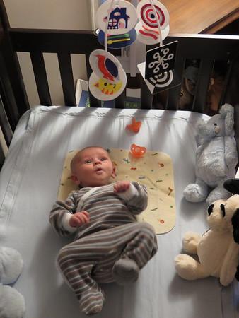 Daniel Three Months